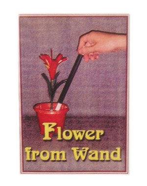Flower From wand