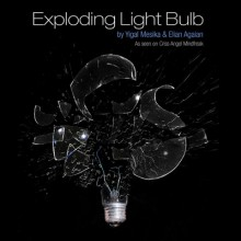 Exploding Light Bulb by Yigal Mesika