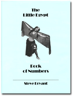 Little Egypt Book of Numbers by Steve Bryant