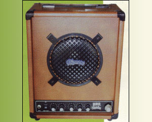 Amplifiers-Battery Powered/30watts
