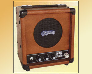 Amplifiers-Battery Powered/20watts