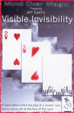 Visible Invisibility by Jeff Ezell